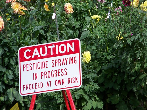 Pesticides Linked to ADHD in Children?
