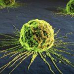 Breakthroughs in Breast Cancer – Screening – Drugs – Biopsies – Stem Cells – Genetics