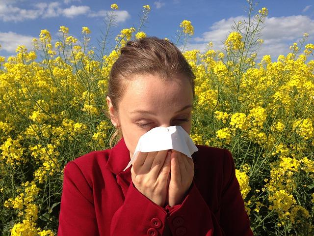 Summer Allergies Problems with Ragweed - Pigweed - Sagebrush