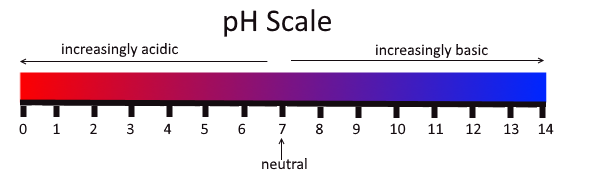 Your PH Balance are You Acidic or Alkaline?