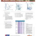 Determining Cancer Stages with Pathology Through Biopsy